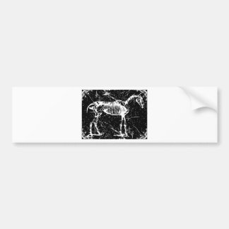 Horse skeleton white bumper sticker