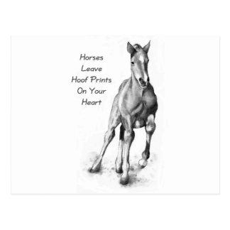 Horses Leave Hoofprints On Your Heart: Pencil Art Postcard