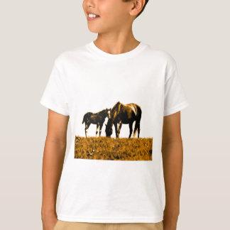 Horses Tshirts
