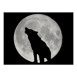 Howling Wolf and Moon Poster