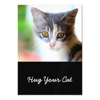 Hug Your Cat Day Cute Cats Kittens Magnetic Invitations
