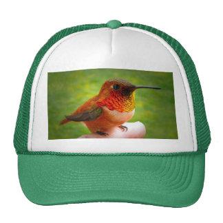 HUMMINGBIRD HAT