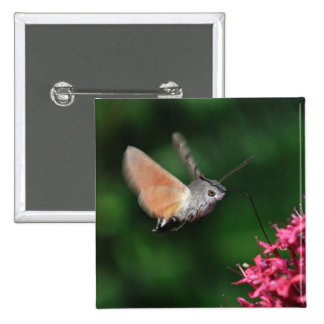 Hummingbird moth hovering 15 cm square badge