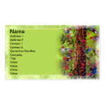 Hummingbirds Pack Of Standard Business Cards