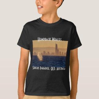 Humpack Whales Surfers Paradise Queensland Custom T Shirts