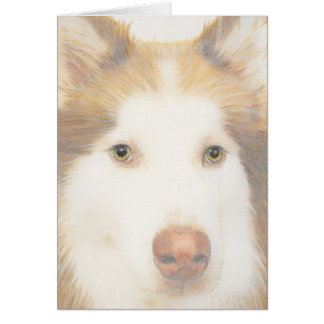 Husky Malamute card, sled dog Greeting Card
