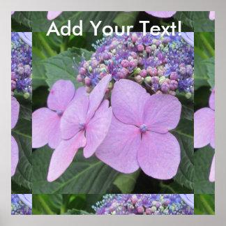 Hydrangea Purple Blooming Flower Poster
