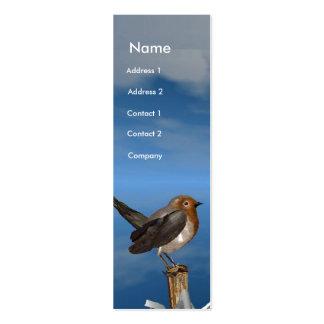 HYPER BIRDS / ROBIN RED BREAST MONOGRAM PACK OF SKINNY BUSINESS CARDS