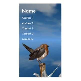 HYPER BIRDS / ROBIN RED BREAST MONOGRAM PACK OF STANDARD BUSINESS CARDS