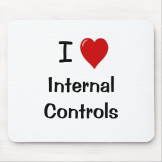 I Love Internal Controls - Funny Compliance Quote Mouse Pad