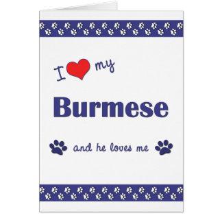 I Love My Burmese (Male Cat) Note Card