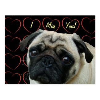 I Love Pugs with Hearts Postcard