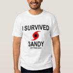 I SURVIVED HURRICANE SANDY TEE SHIRT