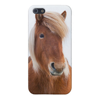 Icelandic Horse during winter  2 iPhone 5/5S Covers
