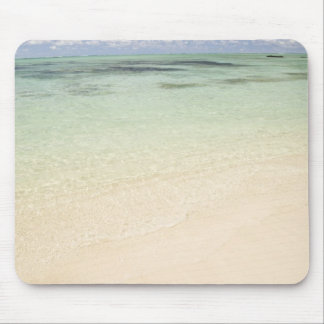Ile Aux Cerf, most popular day trip for Mouse Pad