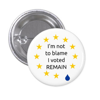 I'm not to blame I voted remain, badge