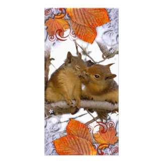 I'M NUTS ABOUT YOU! PHOTO CARD TEMPLATE