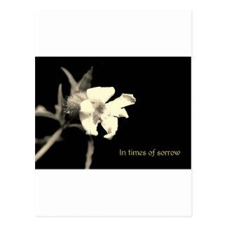 In you time of sorrow - condolences postcard