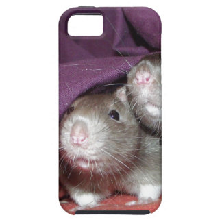 iphone 5 vibe case - rat noses