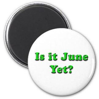 Is it June? (Green) Magnet