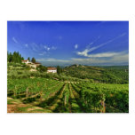 Italy, Tuscany, Greve. The vineyards of Castello Postcard