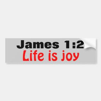 James 1:2 Life is Joy Bumper Sticker