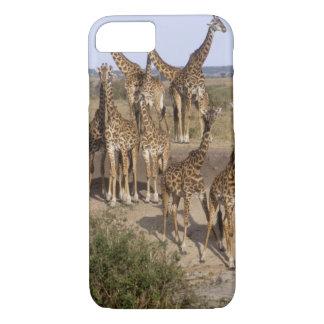 Kenya: Masai Mara Game Reserve herd of one dozen iPhone 7 Case
