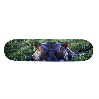 Kenya, Masai Mara National Reserve. 18.1 Cm Old School Skateboard Deck