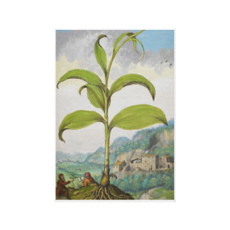King Solomon's-seal Floarl Landscape Canvas Print