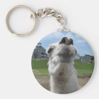 Kiss Me Llama Close-up Basic Round Button Key Ring