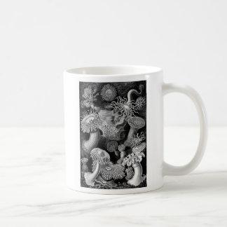 Kitsch Vintage Illustration Anemones Basic White Mug