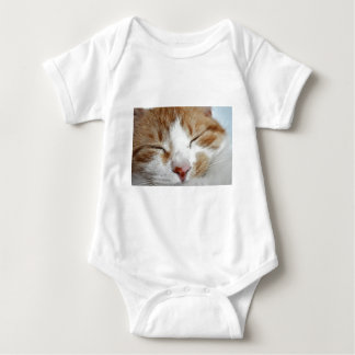 Kitten Afternoon Nap Photo Shirts