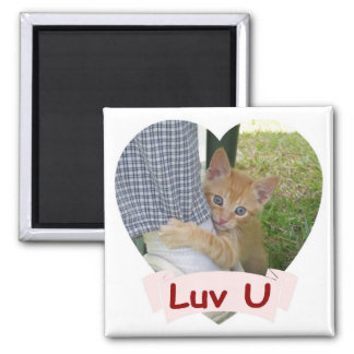 Kitten Dax Love Magnet