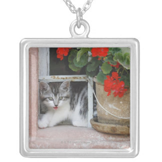 Kitten Looking Out Window Square Pendant Necklace