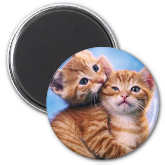 Kitten Love 6 Cm Round Magnet