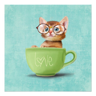 Kitten with glasses photo