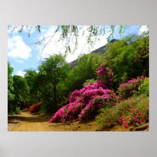 Koko Crater Botanical Garden Poster