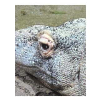 Komodo Dragon 21.5 Cm X 28 Cm Flyer