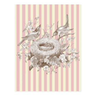 La Petite Famille on pink and cream background Postcard