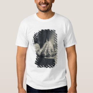 Large Hermitage building, sculpture foot 2 T-shirts