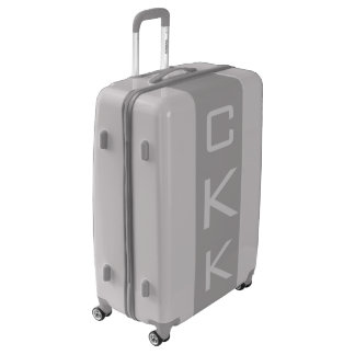LARGE Silver + Gray Monogrammed Luggage