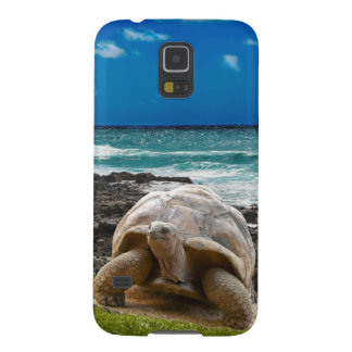 Large turtle at the sea edge galaxy s5 case