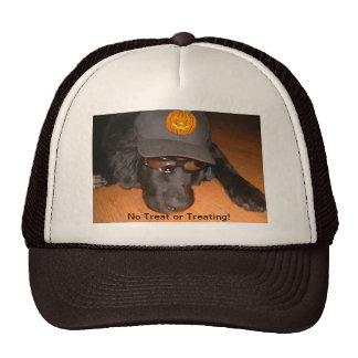 Left Behind This Halloween Hat