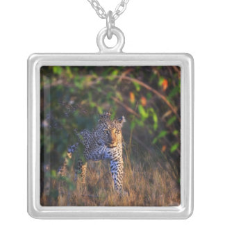 Leopard (Panthera Pardus) as seen in the Masai Square Pendant Necklace