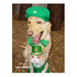 Leprechaun Sighting! Postcard