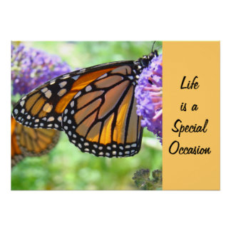 Life is a Special Occasion art prints Butterfly Poster