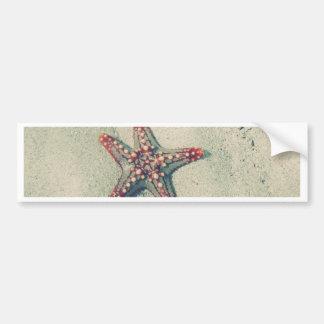 Life of a SeaStar Bumper Sticker