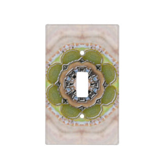 Light Switch Cover 587