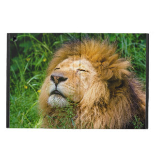 Lion iPad Air Covers