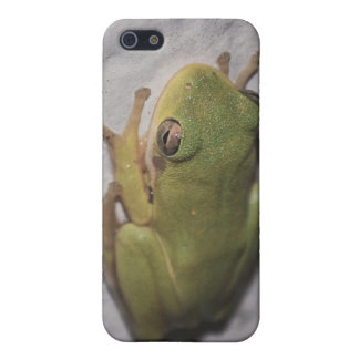 Little Green Frog Case For iPhone 5/5S